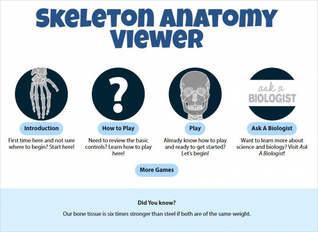 Skeleton Anatomy Viewer, main page