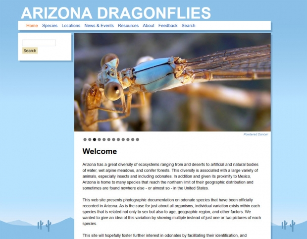 Arizona Dragonflies: Home page