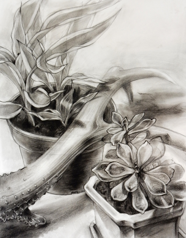 Charcoal drawing: Plants and Antler