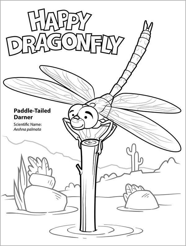 Kid's coloring page of the Paddle-tailed Darner.