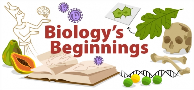 Story Header: Biology's Beginnings