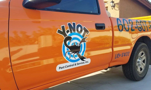 Y-Not Pest Control: Logo on truck