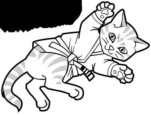 Kitten wearing Brazilian jiu-jitsu grappling gi in a guard position.