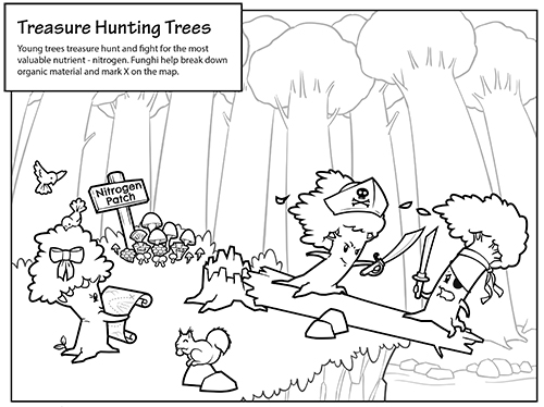 Treasure hunting trees search for and fight over valuable nitrogen resources.
