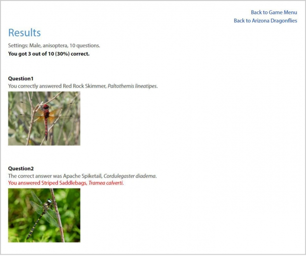 Odonata Quiz: Identify the Dragonfly! Screenshot of part of the results page.