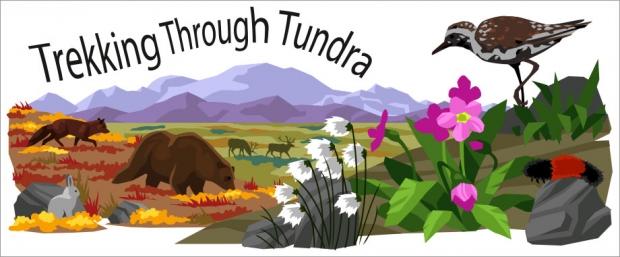 Story Header: Trekking Through Tundra