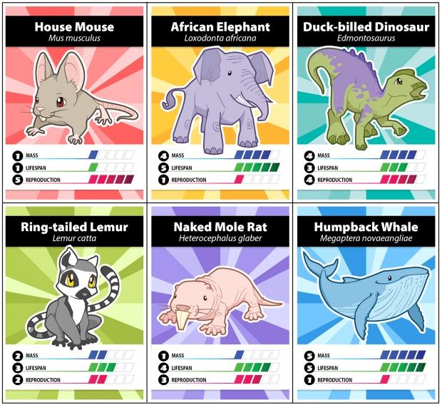 Animal Battle cards (front): House mouse, African elephant, Duck-billed dinosaur, Lemur, Naked mole rat, Blue whale