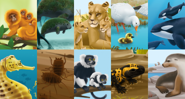 Some of the animals that appear in Moms, Dads, and Lily Pads.